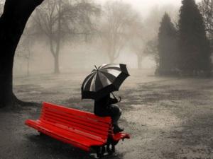 benchrainumbrella