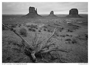 http://www.terragalleria.com/black-white/america/arizona/monument-valley/picture.usaz20203-bw.html