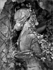 sleeping woman in bed of leaves stone