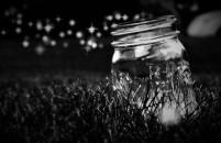 firefliesjar