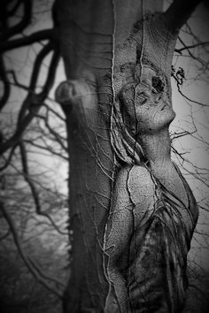 Being Rooted (an out-and-aboutpoem)