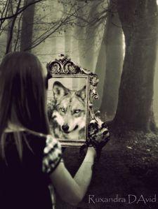 wolfmirror