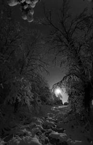Winter-Solstice-Sweden-