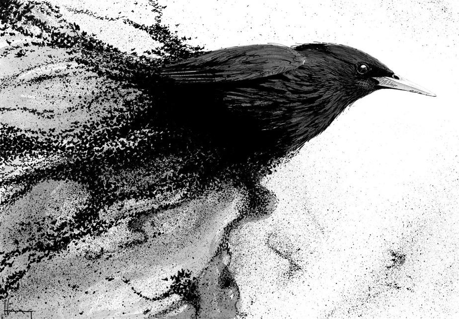 Ink – a lovepoem