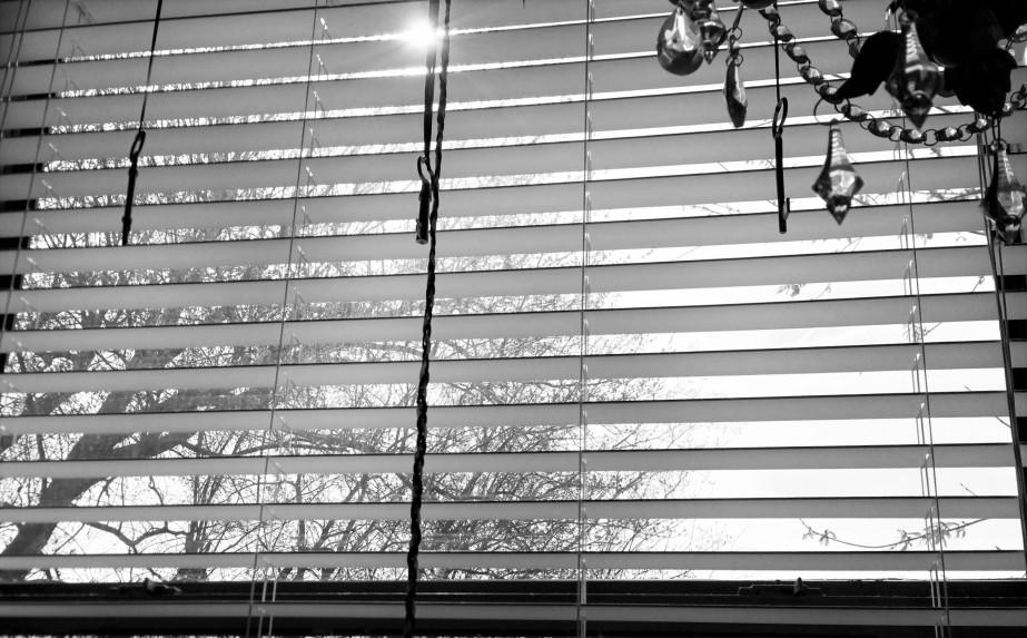 windowmorning